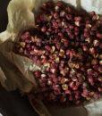 S_Peppercorn2